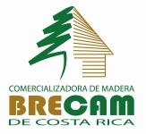 LOGO_BRECAM[1]